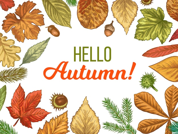 Cześć jesienna karta z ramą liści