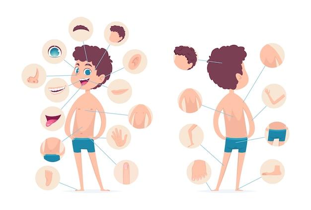 Części ciała chłopca. młoda ludzka szkoła mężczyzna dziecko anatomia ręce nogi palce głowa wektor postać z kreskówki. ludzkie męskie ciało, palec i głowa, palec u nogi i kolano ilustracja