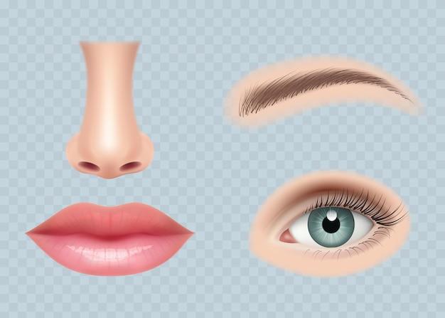 Części twarzy realistyczne. ludzkie ciało oczy ucho nos i usta wektor zdjęcia zestaw na białym tle. twarz ustawiona na oko, ludzki nos i oczy, ilustracja na białym tle