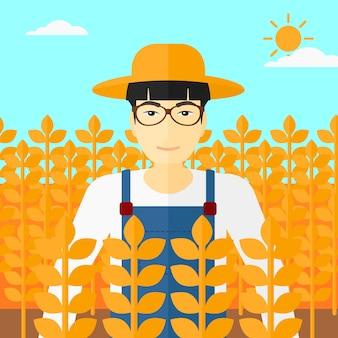 Człowiek w polu pszenicy.