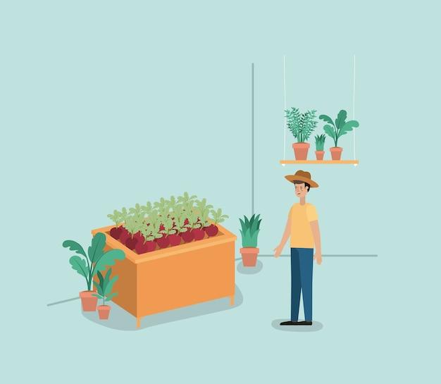 Człowiek z roślinami wiwarium w półkach