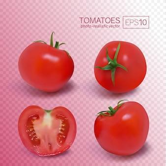 Cztery dojrzałe czerwone pomidory. fotorealistyczna ilustracja wektorowa na przezroczystym tle.