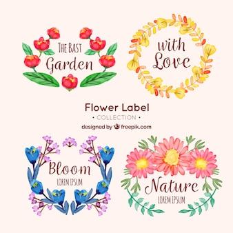 Cztery kwiatowe etykiety w stylu akwarela
