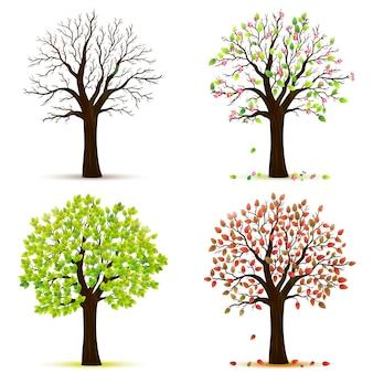 Cztery pory roku drzewa wektor