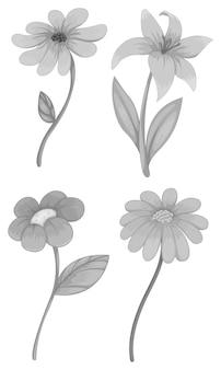 Cztery różne rodzaje kwiatów