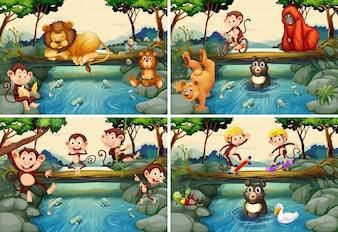 Cztery sceny z dzikimi zwierzętami w rzece