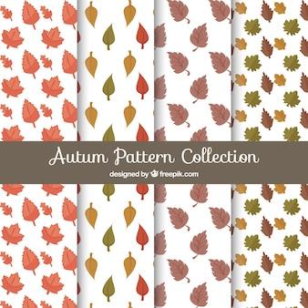 Cztery wzory liści jesienią