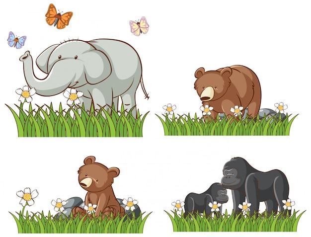 Cztery zwierzęta w ogrodzie