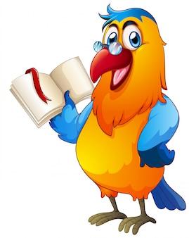 Czytanie książki papugi