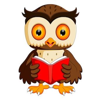 Czytanie książki sowa