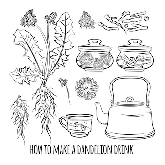 Dandelion drink jak zrobić apteka korzyści roślina medyczna botanic natura zdrowie wektor ilustracja zestaw do druku