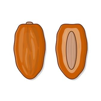 Daty owoce ramadan ilustracja. suszone owoce