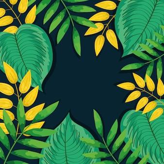 Dekoracja ramy liści tropikalnych kolorów