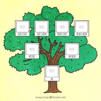 Dekoracyjne drzewo genealogiczne z miejscem na zdjęcie