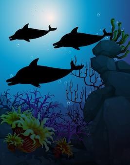 Delfin w sylwetka sceny natury