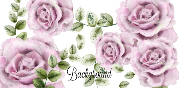 Delikatne różowe róże tle akwarela