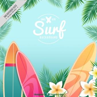 Deski surfingowe i kwiaty w tle