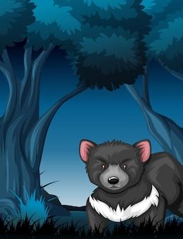 Diabeł tasmański w tropikalnym lesie deszczowym