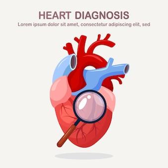 Diagnoza ludzkiego serca. organ z lupą. choroby kardiologiczne, ataki