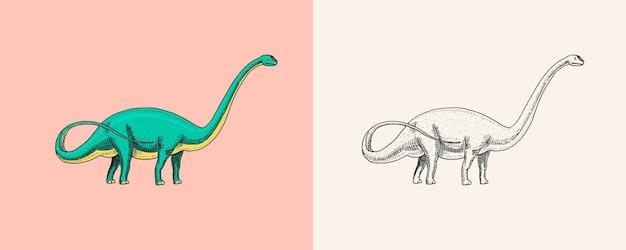 Dinozaur brachiozaur lub zauropod plateosaurus diplodocus apatosaurus skamieniałości skrzydlata jaszczurka