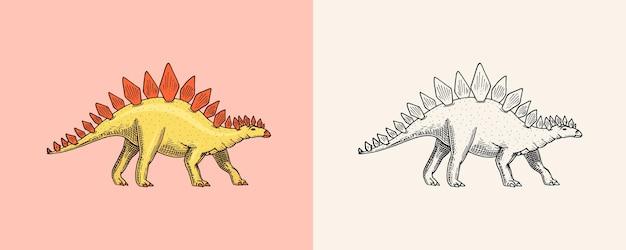 Dinozaur stegozaur skamieniałości prehistoryczne gady zwierzę grawerowane vintage ręcznie rysowane szkic dla