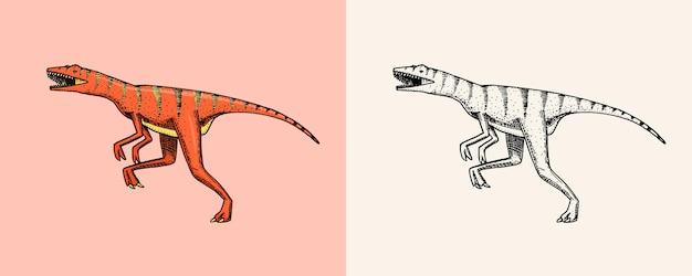Dinozaur velociraptor szkielety skamieniałości prehistoryczne gady vintage szkic do nadruku na koszulce lub