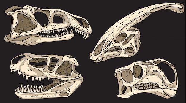 Dinozaury na czarnej tablicy ręcznie rysowane czaszki kolorowe gryzmoły zestaw. zbiór obrazów mięsożernych i roślinożernych skamielin. ilustracji