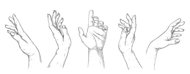 Dłonie damskie