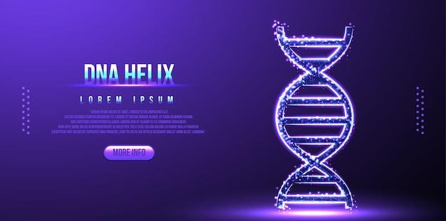 Dna, cząsteczka helisy, model szkieletowy low poly