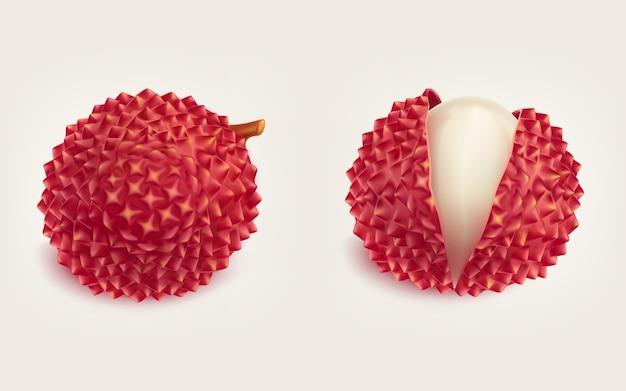 Dojrzałe świeżych owoców litchi realistyczne pojedyncze wektorowe
