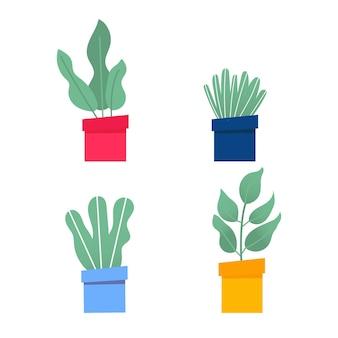 Dom i ogród. kolekcja kolorowych kwiatów botanicznych, jasnych doniczek. zestaw roślin doniczkowych z liśćmi, soczysty kaktus. pojedyncze elementy na białym tle. ilustracja wektorowa płaskie