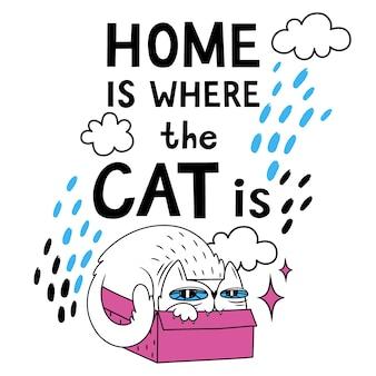 Dom jest kotem