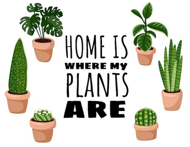 Dom jest tam, gdzie moje rośliny są pocztówką. zestaw ulotki hygge doniczkowe rośliny soczyste. przytulna kolekcja roślin w stylu skandynawskim w stylu lagom