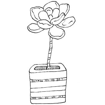 Dom roślin w doniczkach szkicu. zarys rysunku na białym tle ilustracja uprawy kwiatów w wiszących roślin do dekoracji wnętrz domu lub biura. wektor kwiatów ogrodowych.
