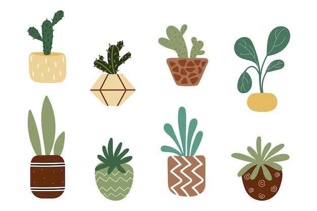 Domowe kwiaty w doniczkach. sukulenty, kaktusy, echeveria zestaw ozdobnych kwiatów. kolorowe doniczki na białym tle. płaska ilustracja
