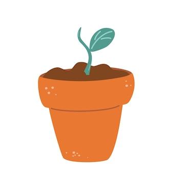 Doniczka z kiełkiem prosta roślina o zielonych liściach w brązowej doniczce