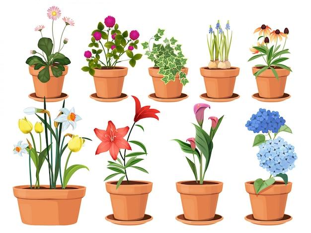 Doniczka z kwiatami. natury kreskówki ilustracja kwiatów i liści piękna kolekcja