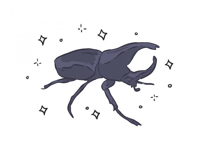 Doodle chrząszcz. ilustracja chrząszcz