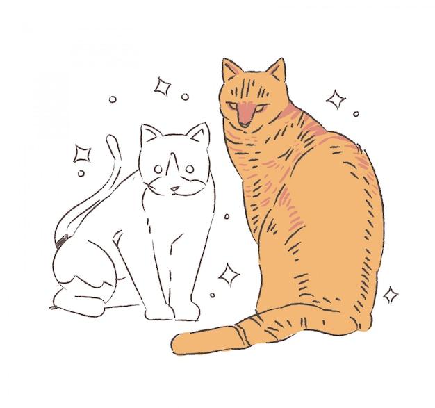Doodle dwóch kotów. ilustracja kot