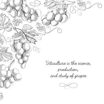 Doodle karty projektowania typografii z napisem, że uprawa winorośli to nauka