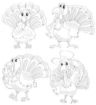 Doodle kontur zwierząt z indyka w czterech akcjach