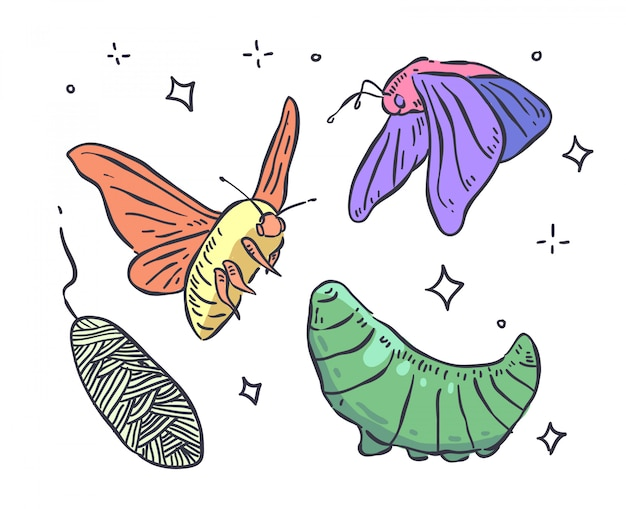 Doodle motyl. ilustracja motyl