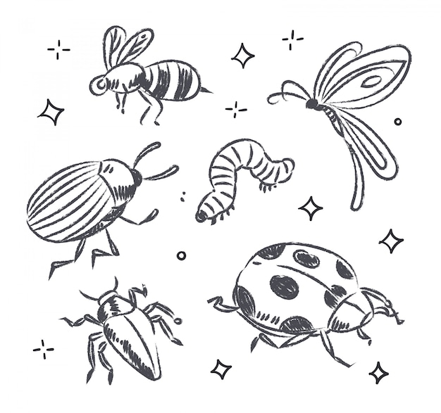 Doodle owadów
