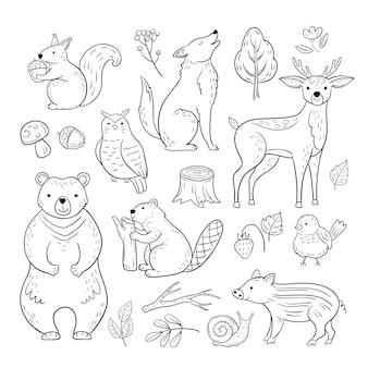 Doodle zwierzęta leśne. woodland cute baby zwierząt wiewiórka wilk sowa niedźwiedź jelenia ślimak dla dzieci szkic ręcznie rysowane zestaw