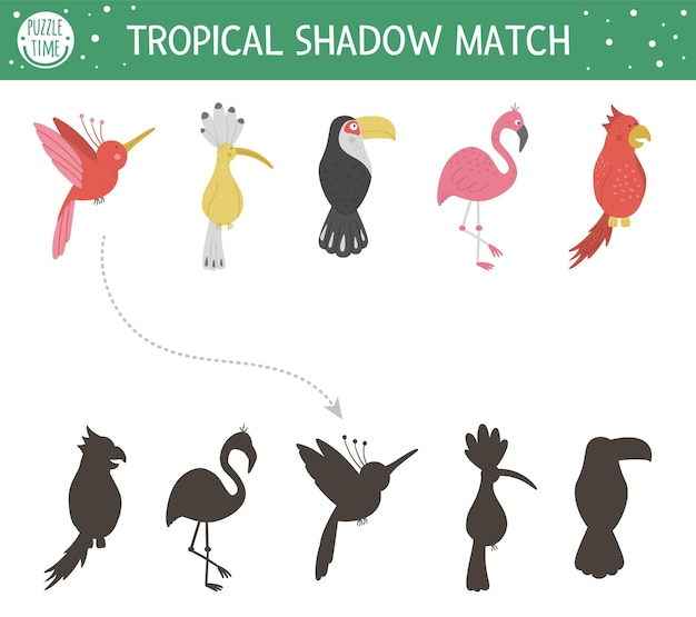 Dopasowywanie cieni tropikalnych dla dzieci. puzzle dżungli w wieku przedszkolnym. śliczna egzotyczna zagadka edukacyjna. znajdź odpowiedni arkusz roboczy z sylwetkami ptaków do wydrukowania.
