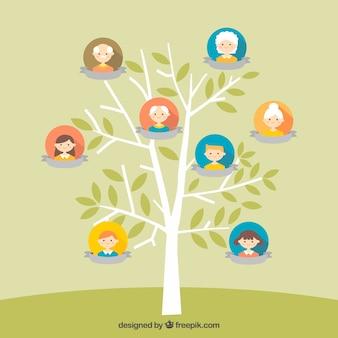 Dość drzewo genealogiczne w płaskiej konstrukcji