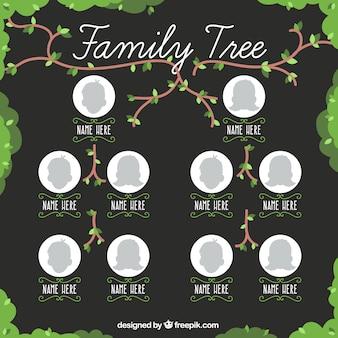 Dość drzewo genealogiczne z gałęzi i liści