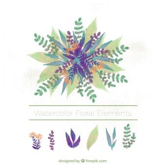 Dość zabytkowe elementy kwiatu akwarela