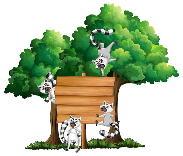 Drewniana tablica szablon z lemury w tle