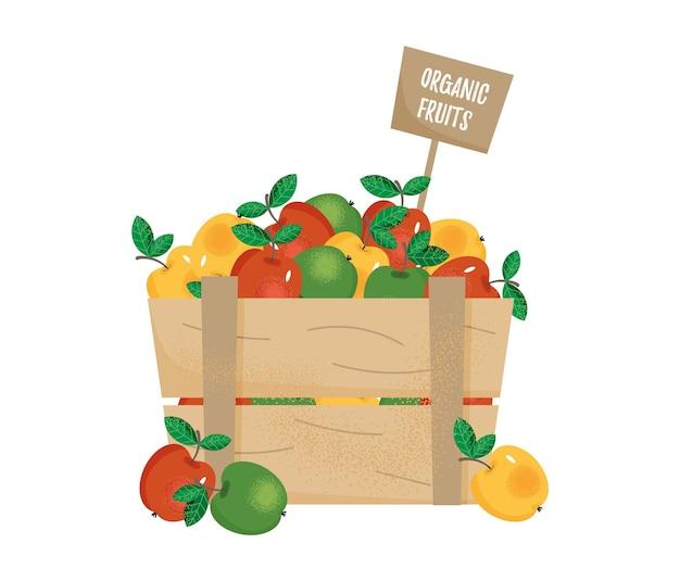 Drewniane pudełko z dojrzałymi kolorowymi jabłkami. napis ekologiczne owoce.